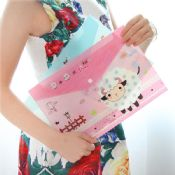 clear file bag with zipper images